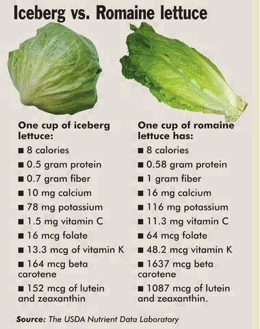 Iceberg versus romaine lettuce nutritional benefits