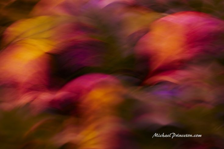 abstract photography, colors, intentional camera movement, interior design, impressionistic photography, abstract art