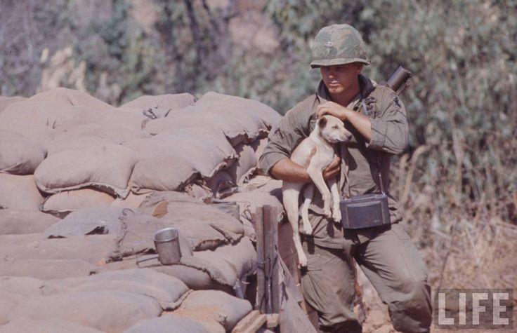 45 Best Images About Vietnam War 1969 1971 On Pinterest