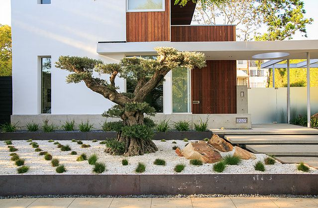 Modern Residential Landscape Architecture Contemporary Landscape Modern Landscaping Modern Landscape Design