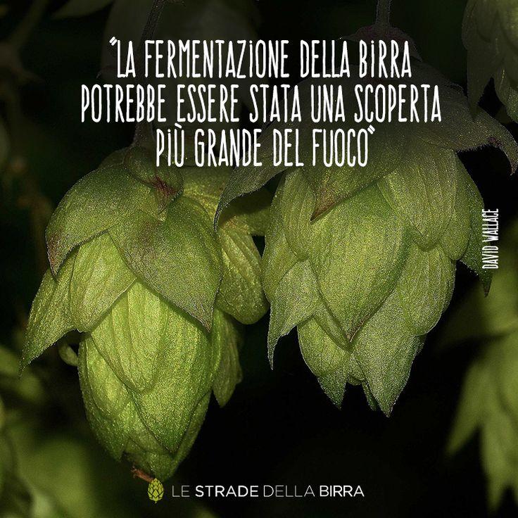 #lestradedellabirra #wedrinkcraft