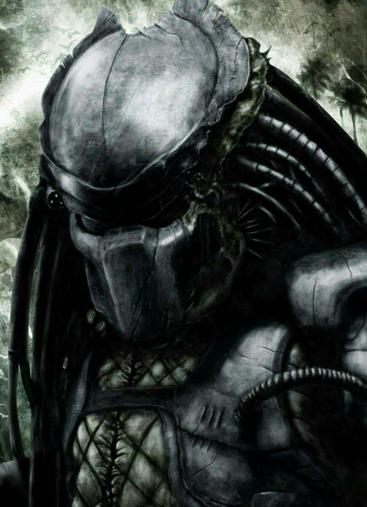predator - photo #49