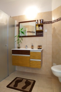 Top 5 bathroom safety features