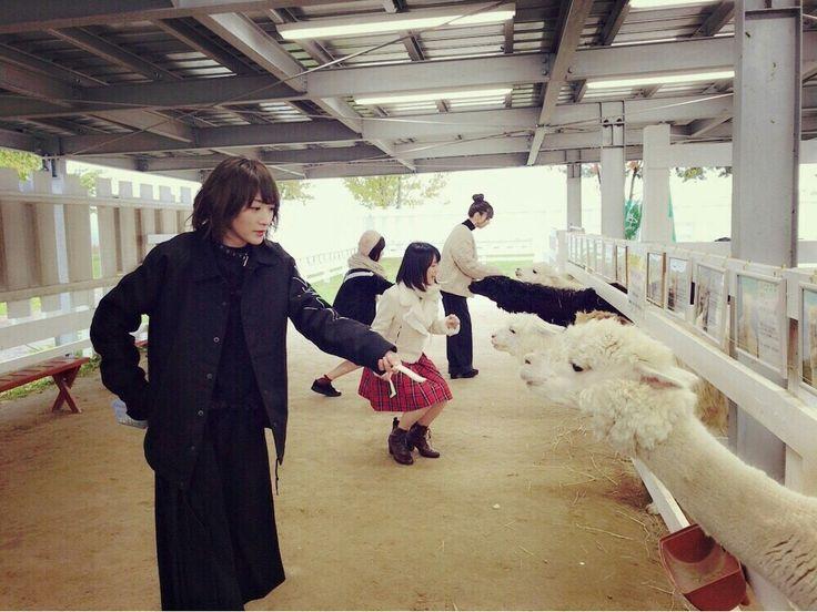 乃木坂46 生駒里奈 生田絵梨花 星野みなみ 橋本奈々未 Nogizaka46 Ikoma Rina Ikuta Erika Hashimoto Nanami