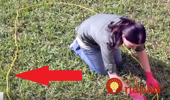 Vytvoriť na záhrade utešené jazierko je omnoho jednoduchšie, ako sa môže zdať. Pozrite sa, ako na to!