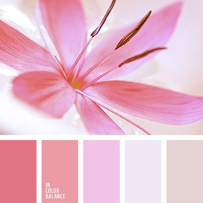 Pink Complementary Color 623 best hand embroidery and colour combination images on