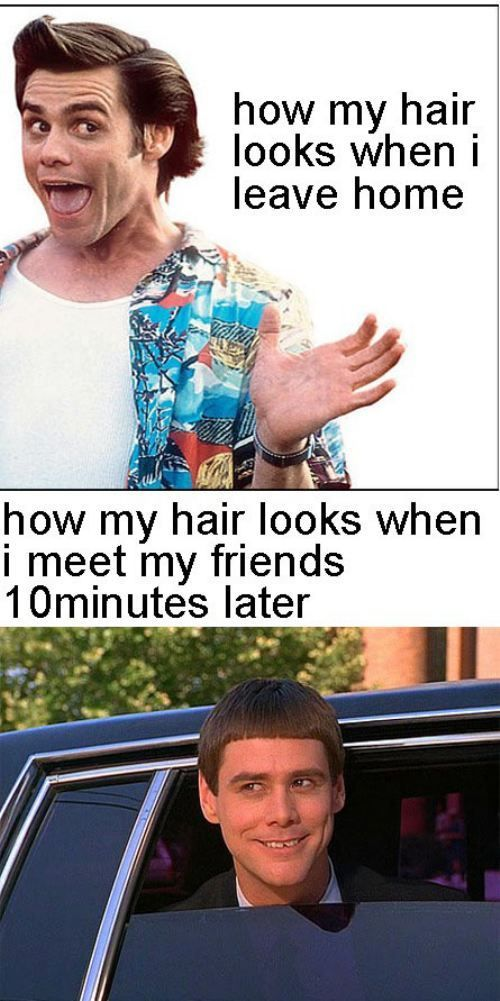 True.Funny Pictures, Hair Problems, So True, Funny Stuff, Jim Carey, Jim Carrey, So Funny, Hair Looks, True Stories