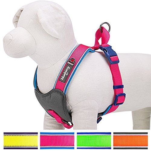nice Blueberry Pet Soft & Comfortable Summer Hope 3M Reflective No Pull Neoprene Padded Dog Harness, 4 Colors, Matching Collar Available Separately