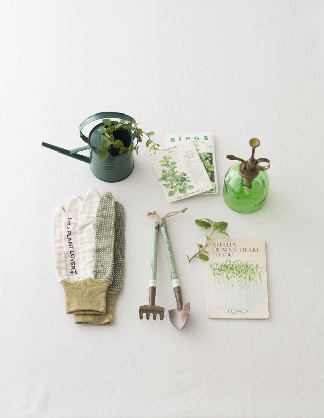 「みどり」という言葉は「瑞々しさ」を意味する言葉として平安時代に登場したそう。英語の green は「草(grass)」や「育つ(grow)」と同じ語源だとされています。/色のひみつ (「はんど&はあと」2013 年 5 月号)