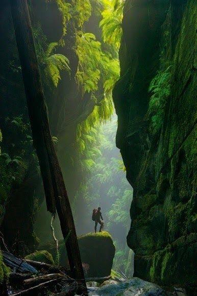 Beautiful Mountains -                                Blue Mountains- Australia