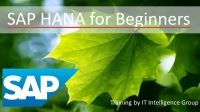 SAP HANA for Beginners by SAP Trainers at IT Intelligence Group.
