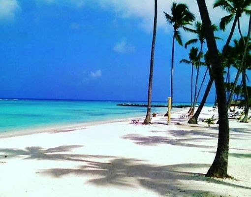 436 best Punta Cana Dominican Republic images on Pinterest