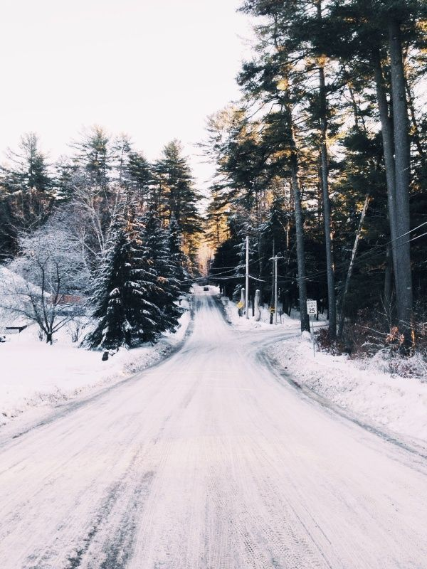 Winter / photo by Josh Chang