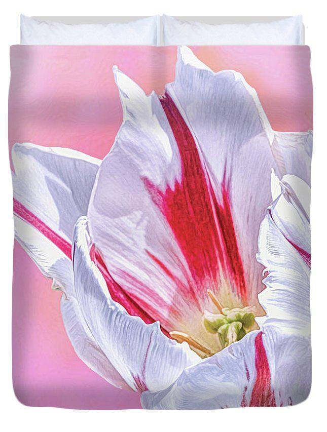 Cotton Candy Stripe Tulip Duvet Cover For Sale By Norman Gabitzsch Fine Art America Candy Stripes Art