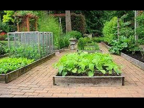 Умные грядки и советы дачникам огородникам