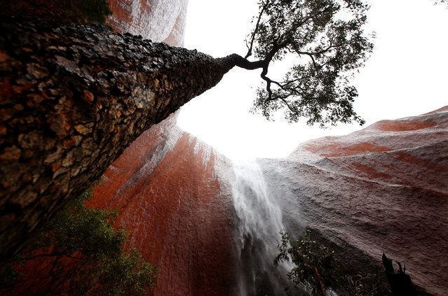 A waterfall is seen in Kantju Gorge as it rains at Uluru on November 28, 2013 in Uluru-Kata Tjuta National Park, Australia. Uluru/ Ayers Rock is a large sandstone formation situated in central Australia approximately 335km from Alice Springs. The site and its surrounding area is scared to the Anangu people, the Indigenous people of this area and is visited by over 250,000 people each year.  (Photo by Mark Kolbe/Getty Images)