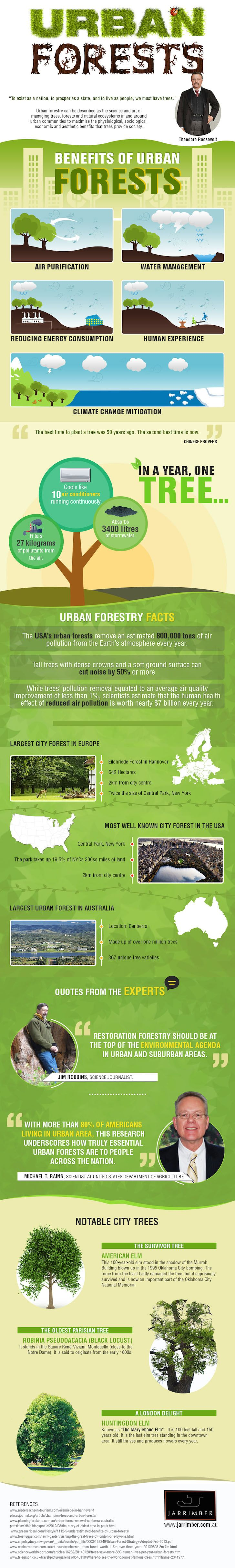 Jarrimber, reader submitted content, urban forestry, urban forests, trees, urban trees, infographic,