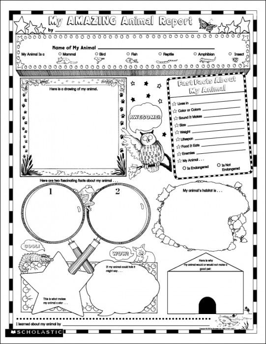 Instant Personal Poster Sets: My Amazing Animal Book Report | Kids will learn and have fun writing about what makes their creature special, sharing habitat facts, drawing an animal portrait, and more.