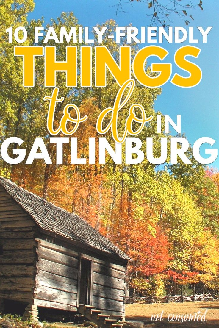 Headed to Gatlinburg (or thinking about it)? We loved this trip and you will, too. Come and find out what our top 10 family-friendly things to do in Gatlinburg turned out to be! I think you'll be surprised.