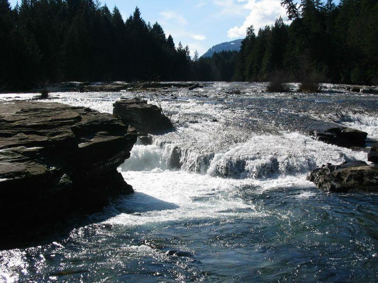 'Puntledge River Trails' - Kim Senechal