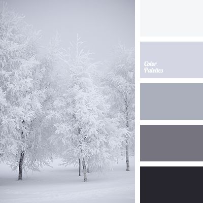 almost black color, beige color, black color, color combination for winter, color of snow, color palette for winter, graphite grey color, gray color