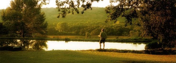 Budmarsh Country Lodge | Magaliesberg accommodation | South African accommodation |Budmarsh Country Lodge