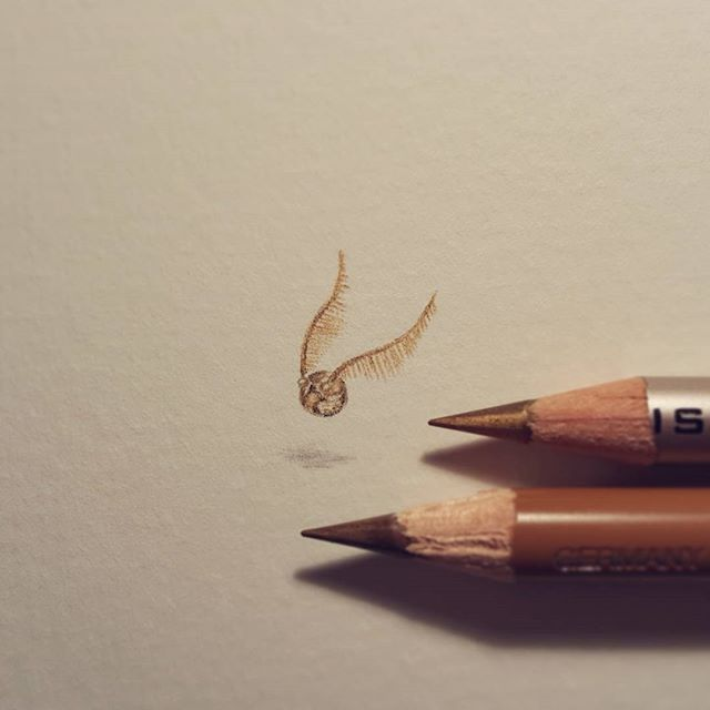 regram @cheneygram Mini Golden Snitch.