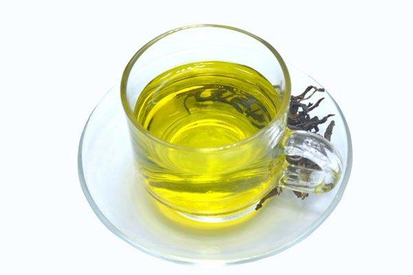 O consumo do Chá de Boldo ajuda a promover a liberação de bile e agentes que dissolvem gordura, oque ajuda no emagrecimento.