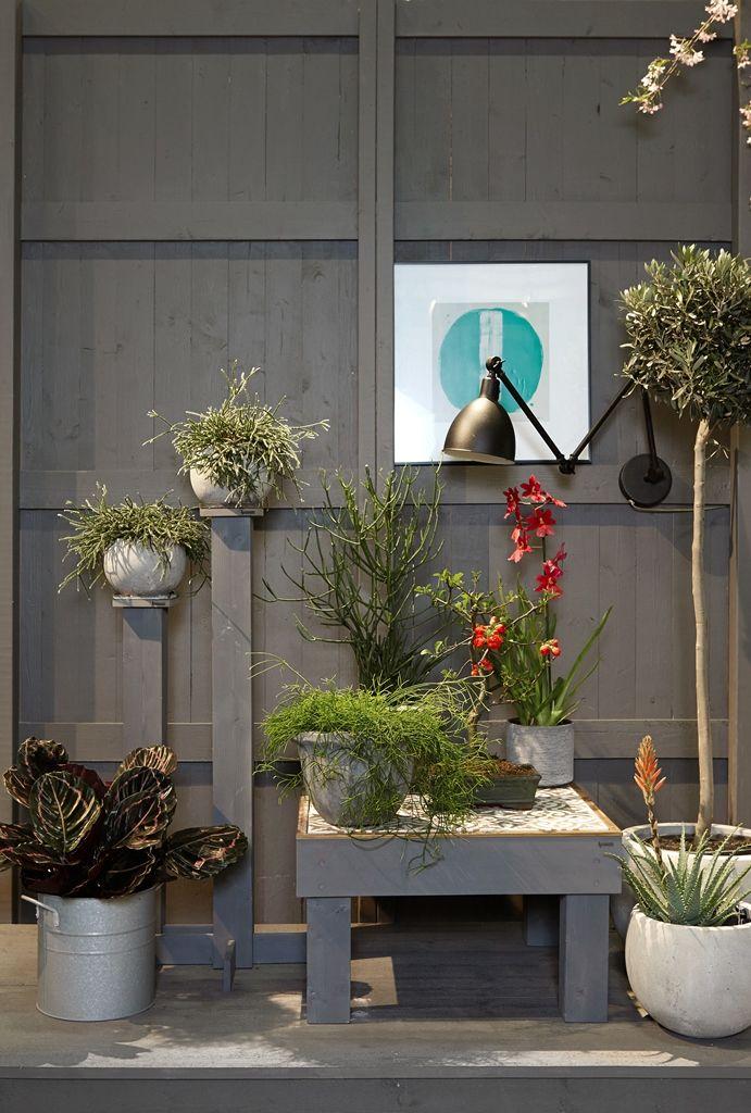 Nordic Gardens - Urban bloom. Stockholmsmässan Nordiska trädgårdar Urban Fägring – stad och trädgårdar möter växtliv och grönska. #Plantagens exhibition by #Oddbirds. #scandinavian #garden #balcony #balkong trädgård . Photo: Maria Macri for Plantagen