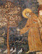 Saint Francois d Assise - Sur La Vie Monastique