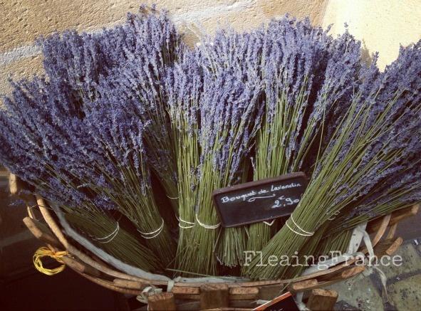 Lavender FleaingFrance: Lavender Fleaingfrance, Lavish Lavender, Lavender Fields, Lavender Flowers, Lavender Mi Fav, Luscious Lavender, Lavender France, Lavender Obsession, La Lavender