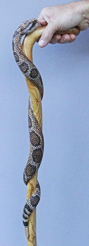 Hand carved rattlesnake walking cane, by Mike Stinnett