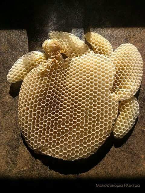 Φυσικο κερι μελισσας για παρασκευη κεραλοιφων