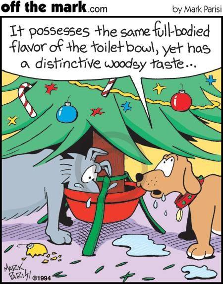 Christoph S   Google+. Christmas CartoonsChristmas HumorMerry ...