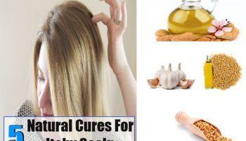 Top 5 Curas Naturais Para coceira no couro cabeludo