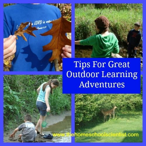 Tips For Great Outdoor Learning Adventures
