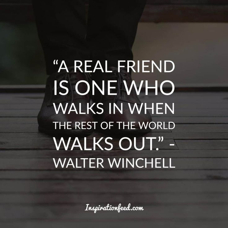 Best Short Quotes Funny: Best 25+ Short Funny Quotes Ideas On Pinterest