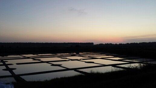 Les marais salants, Guérande