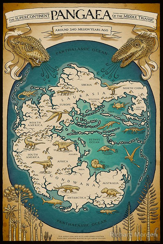 776 best map images on pinterest historical maps family tree the supercontinent pangaea of the triassic period a map of the earth around 250 to 200 million years ago featuring gondwanna laurasia and pangaea the sciox Image collections