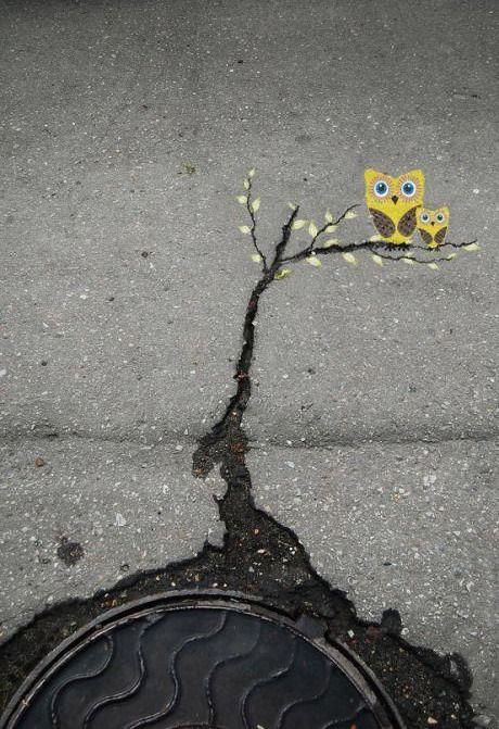 street art: owls in tree