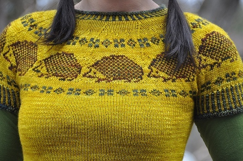Hedgehog sweater! yarn-and-knitting love it Pinterest
