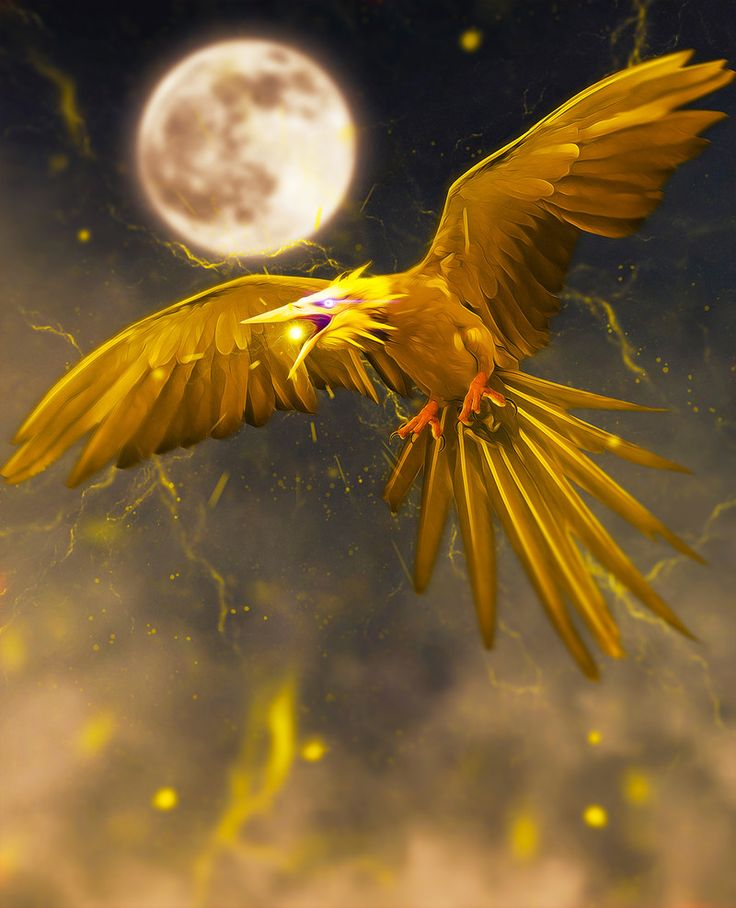 Realistic Pokemon - Zapdos by Adam Doyle