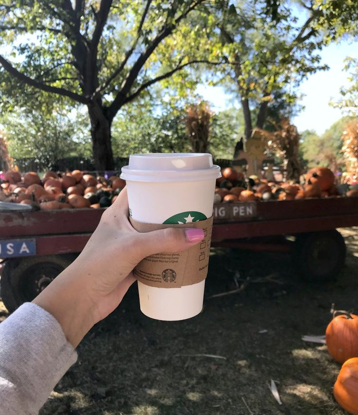 all things cute + cozy for fall
