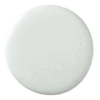 Pale Powder -  try this whisper of a color that goes green or blue in different lights. It adds character and a bit of age, it's easy to live with,