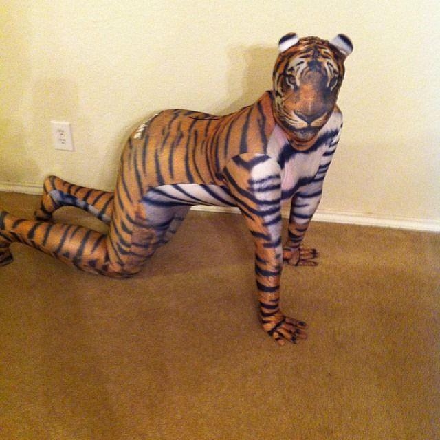 tiger morphsuit animal halloween costume 2013 httpwwwmorphsuitsco - Morphsuits Halloween Costumes