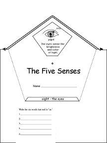 78 best Unit Ideas: The 5 senses images on Pinterest
