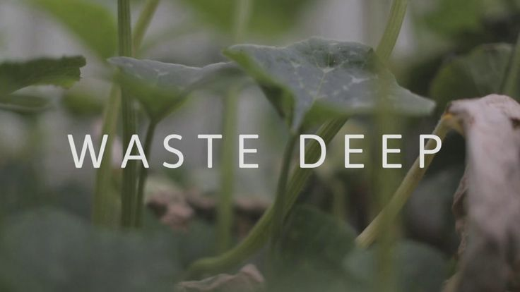WASTE DEEP a documentary that will change the way we cook and eat