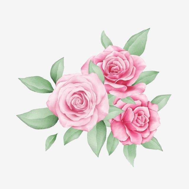 Lindo Pequeno Buque De Rosas Aquarela Para Composicao De Cartoes Rosas Clipart Casamento Convite Imagem Png E Vetor Para Download Gratuito Arte Flor Arte Floral Imagem Floral
