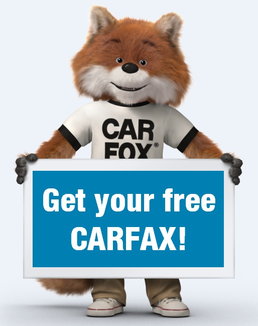 22 Best Images About The CAR FOX On Pinterest