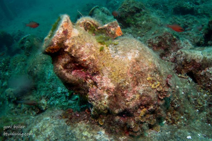 Diving Croatia - amphorae and pithoi  Close to Cavtat it is possible to visit a site with around 1800 amphorae from around 300 AD as well as huge pithoi. Something completely different and so worth doing it!